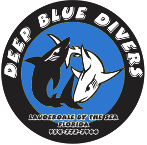 deep blue divers fort lauderdale